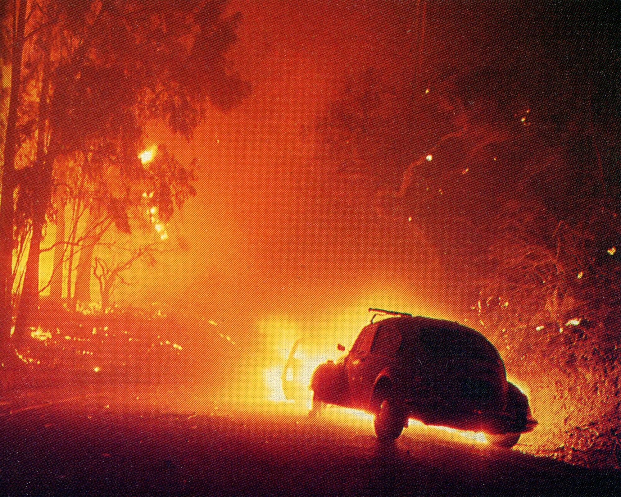 1977 Sycamore Fire