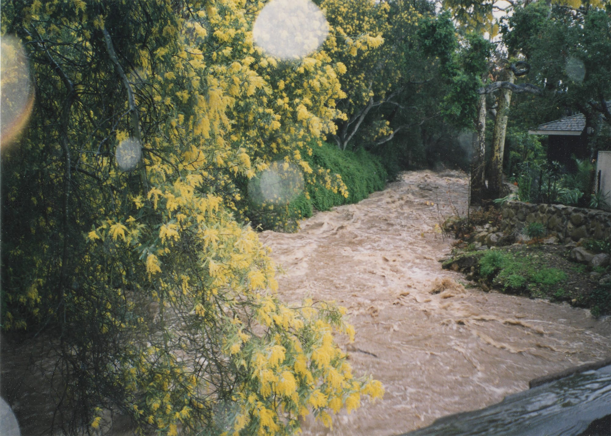 Floodwaters, 1998