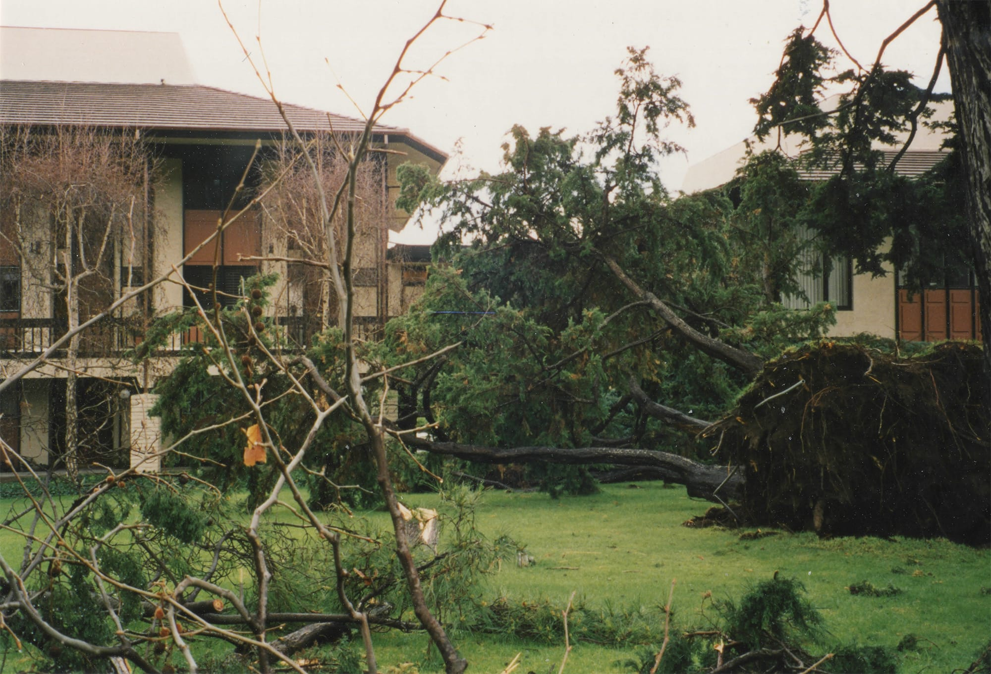 1998 Flood