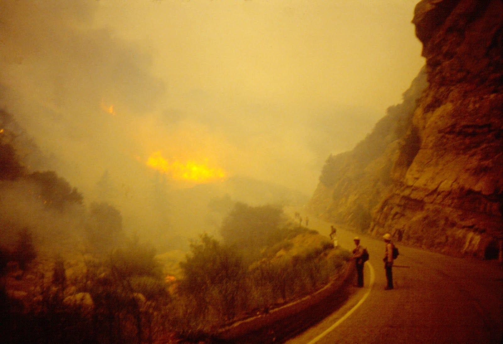 Wheeler Fire From Highway 33, 1985