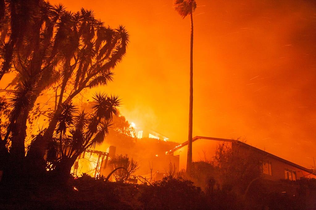 Tea Fire, 2008